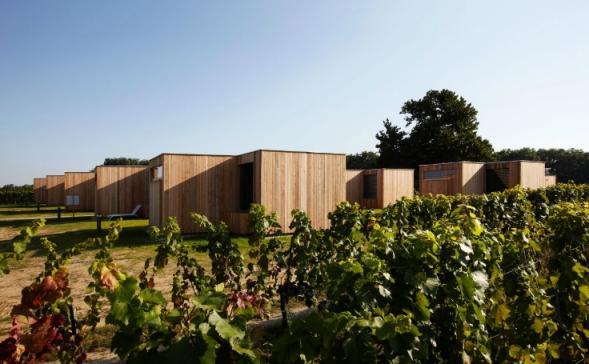 Bydlení na vinici