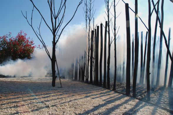 Oheň a 300 stromů